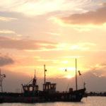 Kraken Boat Trips Lyme Regis