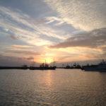 Cobb Harbour Boat Trips Lyme Regis
